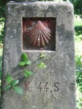 IMG 5711