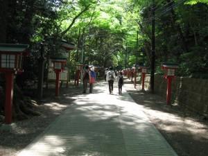 japon 624