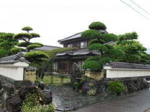 japon  (147)