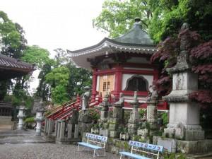 japon  (169)