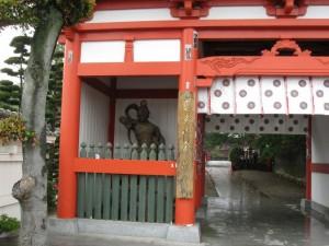 japon  (181)
