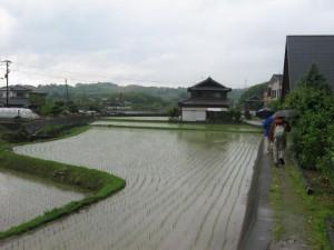 japon  (190)