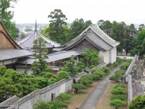 japon  (217)