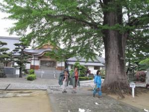 japon  (223)