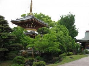 japon  (236)