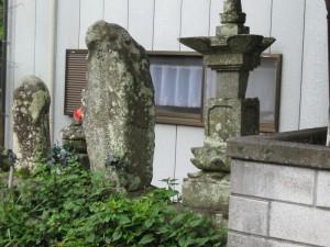japon  (256)