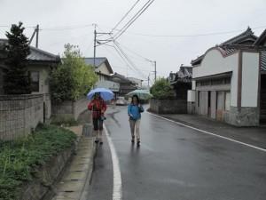 japon  (257)
