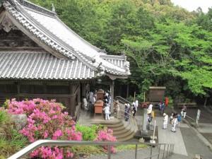 japon  (284)