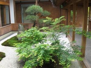 japon  (310)