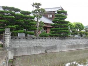 japon  (336)