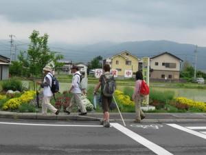 japon  (340)