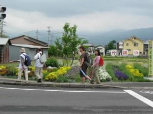 japon  (341)