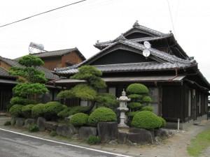 japon  (348)