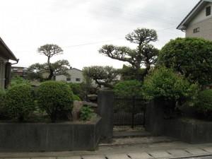 japon  (368)