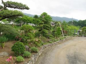 japon  (370)
