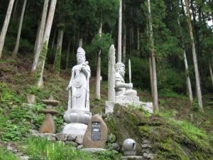 japon  (475)