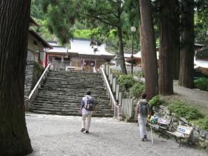 japon  (486)