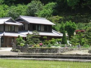 japon  (568)