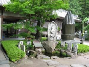 japon  (589)