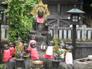 japon  (593)