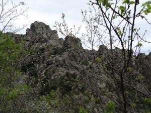 voie arles 04 2014 (23)