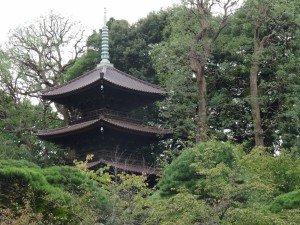 Japon 2015 0010