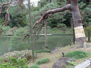 Japon 2015 0020
