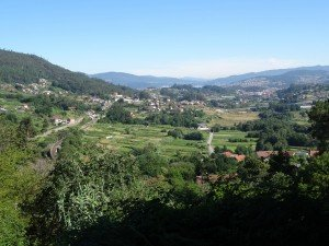 rodondella (46)
