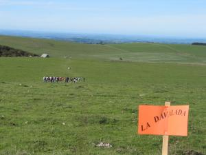 2006-10-08 La Davalade-0023
